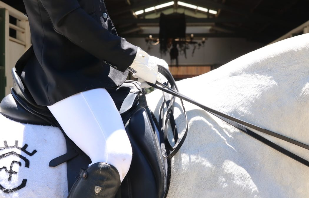 The Horse Rider's Saddlery Guide to Ensuring the Perfect Fit: Part 2