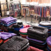 Dog Beds & Cushions