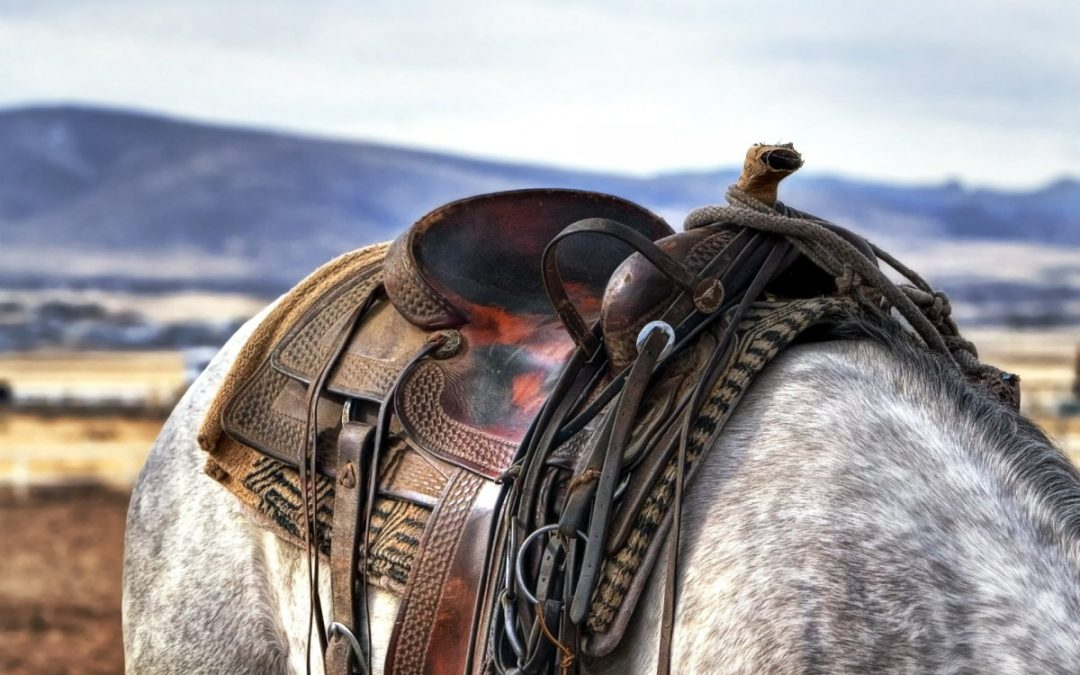 What are High Quality Western Saddles Made of and Why?