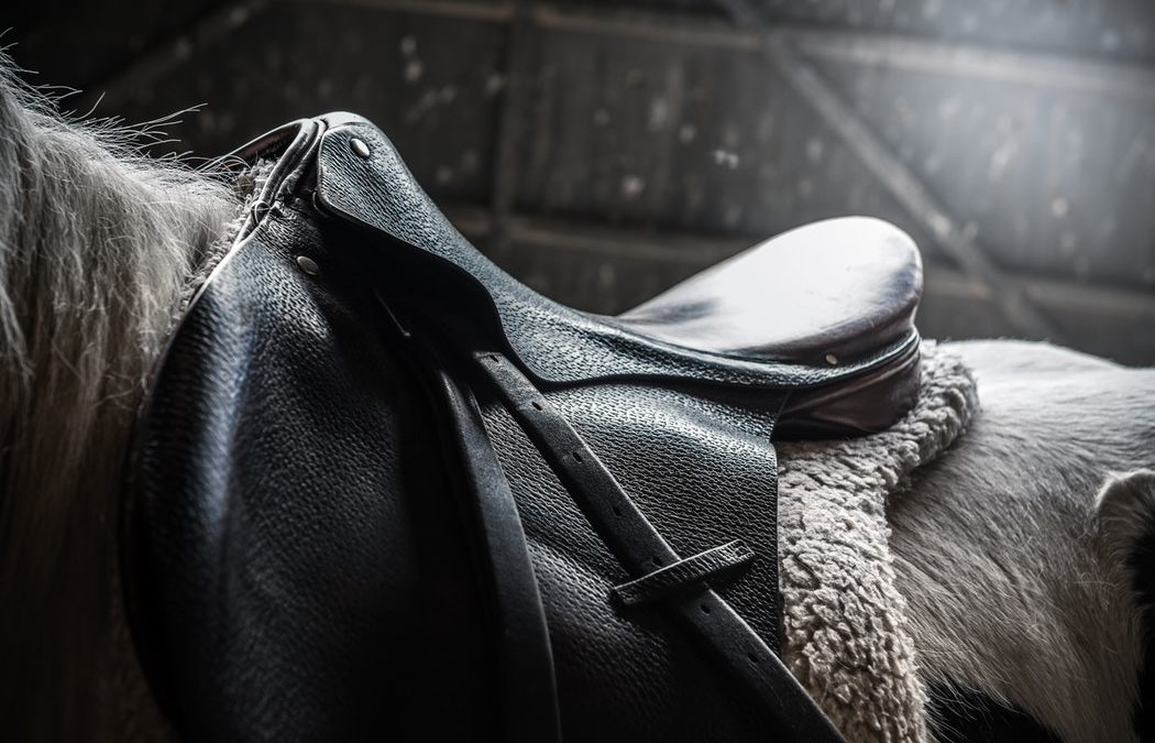 How to Take Good Care of Leather Equestrian Equipment