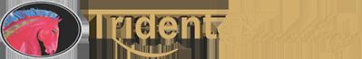 Trident Saddlery