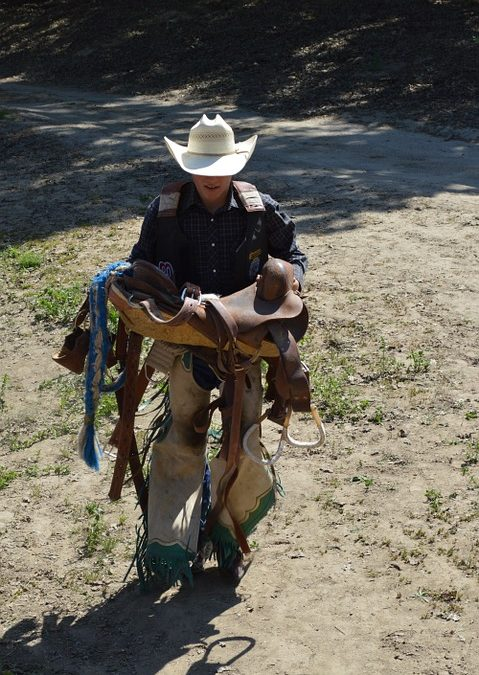Things to Keep in Mind When Purchasing a Saddle
