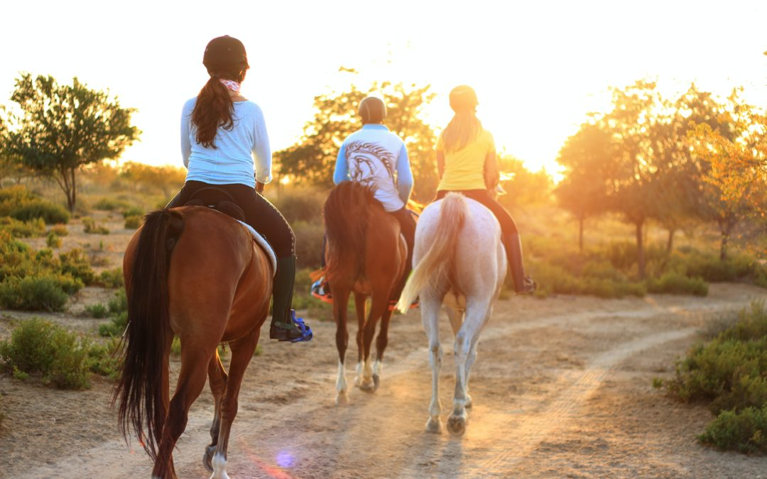 Why Horse Riding is Good for You